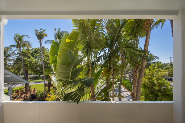 Hawks Cay King Guestroom Tropical Window View