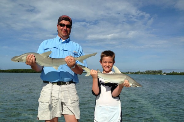 Shark caught on I'm Hooked fishing charter at Hawks Cay Resort in the Florida Keys